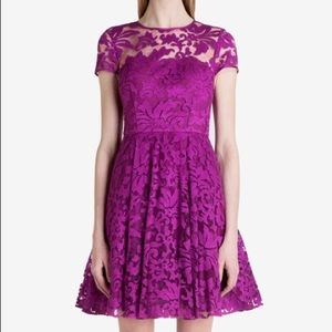 Ted Baker Caree Lace Dress size 8